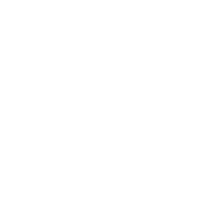 Zukku Sushi - CHARLOTTE